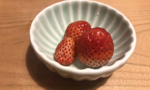 イチゴと玉ねぎの収穫