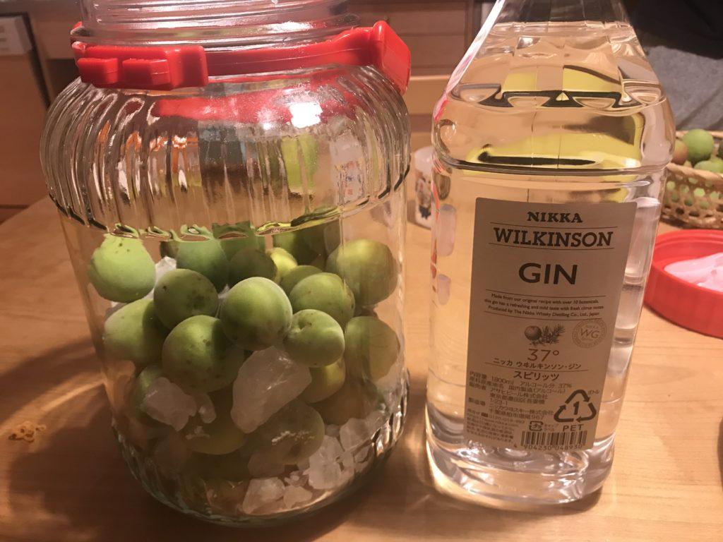自家製梅酒の作り方