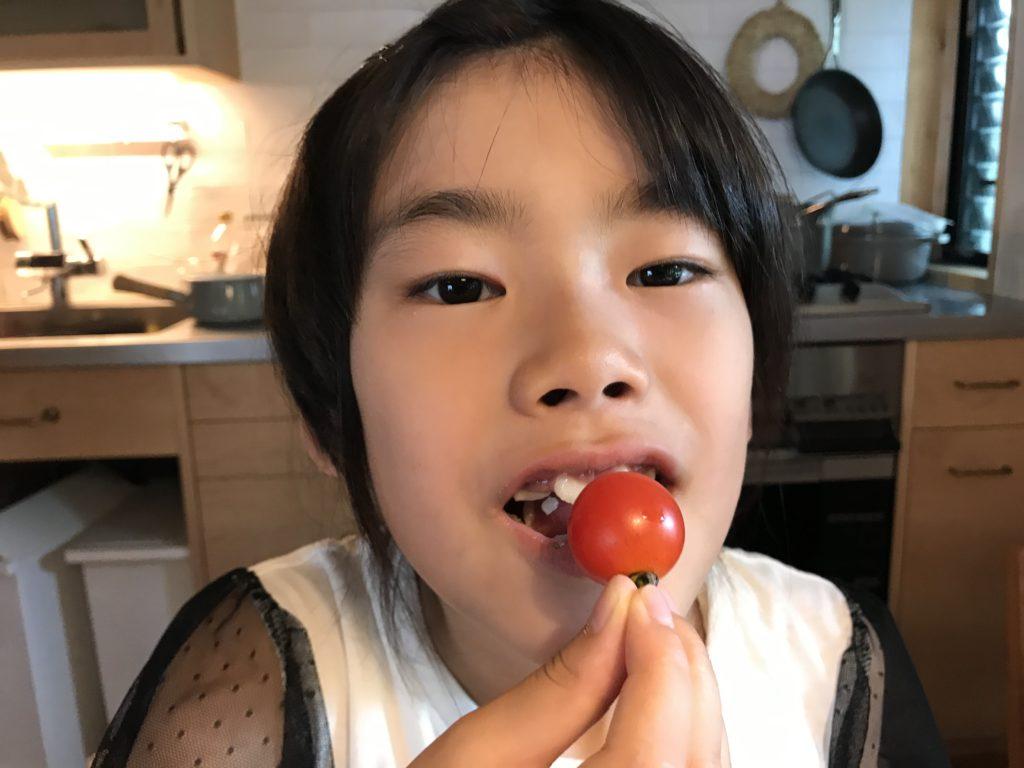 収穫したトマトを食べる長女